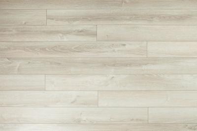 D3523 Syriusa Oak
