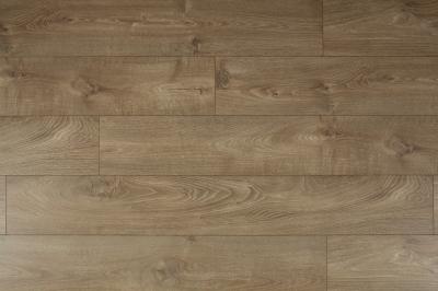 D4905 Iris Oak