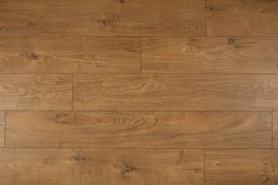 D4909 Mamre Oak